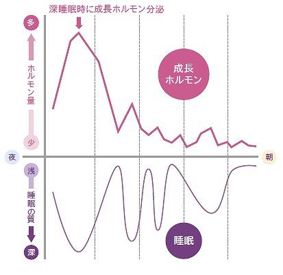 (睡眠中の成長ホルモンのイメージ図)